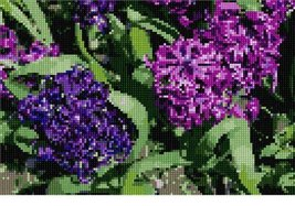 Hyacinth Needlepoint Kit - $71.50
