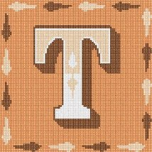 Letter T Needlepoint Kit - $50.00