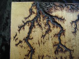 Lightning Wood - $35.00