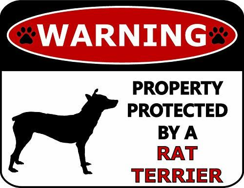 Primary image for Top Shelf Novelties Warning Property Protected by A Rat Terrier (Silhouette) Lam