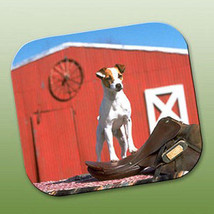 Jack Russell Terrier & Saddle Mouse Pad - $247,15 MXN