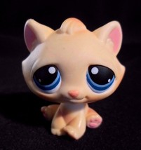 LPS #122 Cream Tabby Cat Blue Eyes Littlest Pet Shop Year 2004 Magnet - $10.73