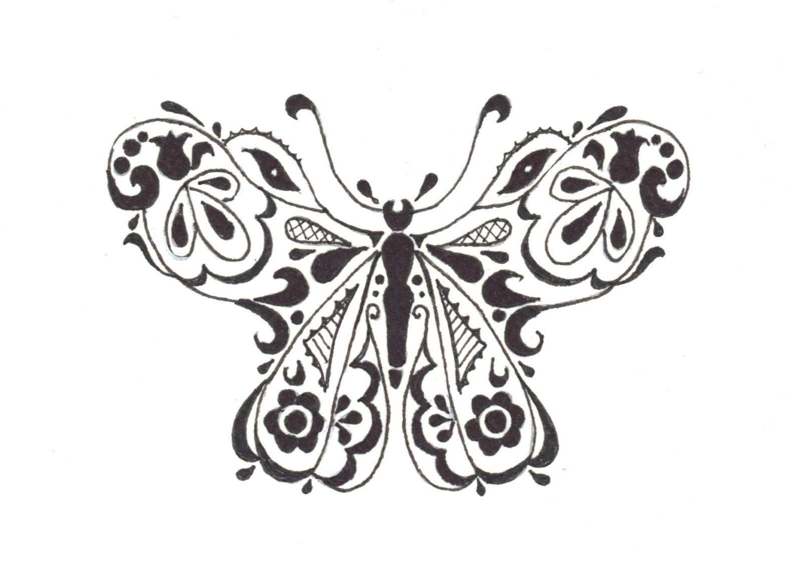 Akimova: BUTTERFLY, garden, insect, black, white, ink, pen, ACEO