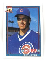 1991 Topps Baseball Card #254 - Shawn Boskie - Chicago Cubs - Pitcher - $0.99