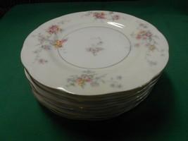 Beautiful Theodore Haviland Made In America...Set Of 9 Dinner Plates - $64.93