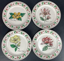 "4 NEW Botanical Gardens TABLETOPS UNLIMITED 7.5"" Dessert / Salad Plates - $24.74"