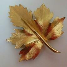 Vintage Signed Boucher Gold-tone Textured Leaf Brooch - $49.01