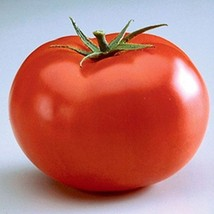 SHIP From US, 25 Seeds First Prize F1 Hybrid Tomato, DIY Healthy Vegetable AM - $24.99