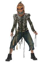 California Costumi Zucca Creatura Monster Bambini Costume Halloween 00632 - $41.08