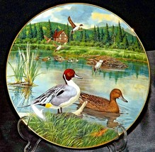 The Pintail Commemorative Plate by Bart Jerner ( Knowles ) AA20- CP2251 Vintage