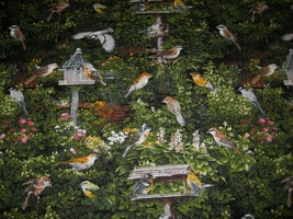 fabric Michael Miller garden Birds for quilting craft general sewing by ... - $10.40