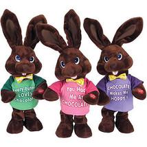 Chocolate Bunnies Musical Plush Toy - $10.00
