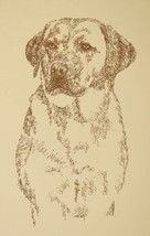 YELLOW LABRADOR RETRIEVER ART PORTRAIT #92 Kline will add dogs name free... - $49.45
