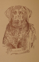CHOCOLATE LABRADOR RETRIEVER DOG ART GIFT #63 A... - $49.45