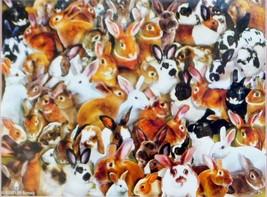 SunsOut Lori Schory A Bundle of Bunnies 1000 pc Jigsaw Puzzle Rabbits Hares - $15.83