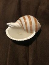 Natura Striped Tun Shell Candle Beach Craft Nautical Design - $14.99
