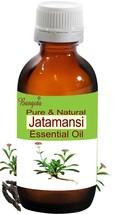 Jatamansi Oil- Pure Natural Essential Oil-50ml Nardostachys jatamansi by... - $56.72