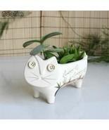 1pc Cute Small Ceramic Cat For Succulents Decorative Mini Flower Pot Home Garden - $29.69