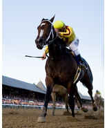 Rachel Alexandra Woodward Stakes  - $15.00