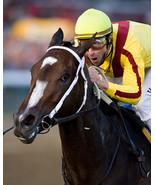 Rachel Alexandra  Close up  - $15.00
