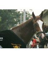 8x10 color photo -Saratoga Bath- Rags to riches 38 - $15.00