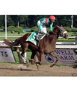 VISONAIRE 8x10 Color photo @ Saratoga (107) - $15.99