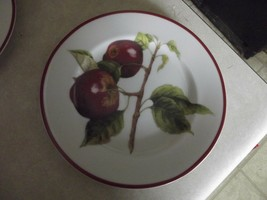 Williams Sonoma WSO66 ( 2 red apples) salad plate 1 available - $10.99
