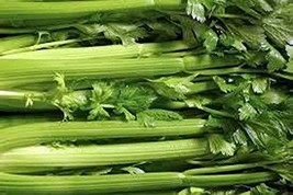 Celery Seed, Tendercrisp, 50 Seeds, Heirloom, Non GMO, for Gardening - $4.49