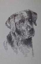 BLACK LABRADOR RETRIEVER DOG ART PRINT #72 Klin... - $49.45