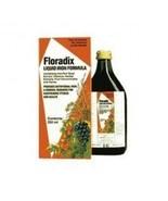 Floradix - Floradix Liquid Iron Formula 250ml - $14.80