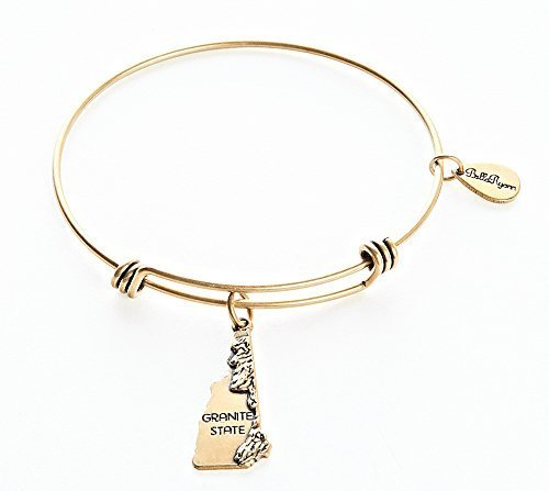 State of New Hampshire Charm Bangle Bracelet (gold-plated-base) [Jewelry]