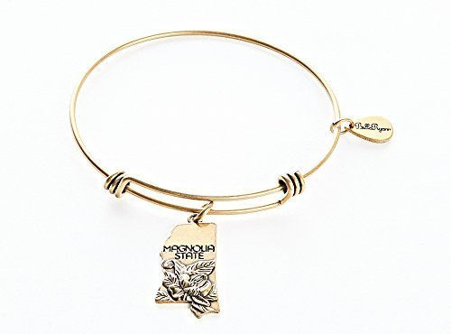 State of Mississippi Charm Bangle Bracelet (gold-plated-base) [Jewelry]