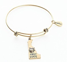 State of Delaware Charm Bangle Bracelet (gold-plated-base) [Jewelry]