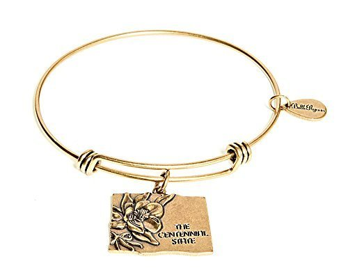 State of Colorado Charm Bangle Bracelet (gold-plated-base) [Jewelry]