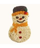 Mr. Bird Seed Frosty Snowman - $21.50