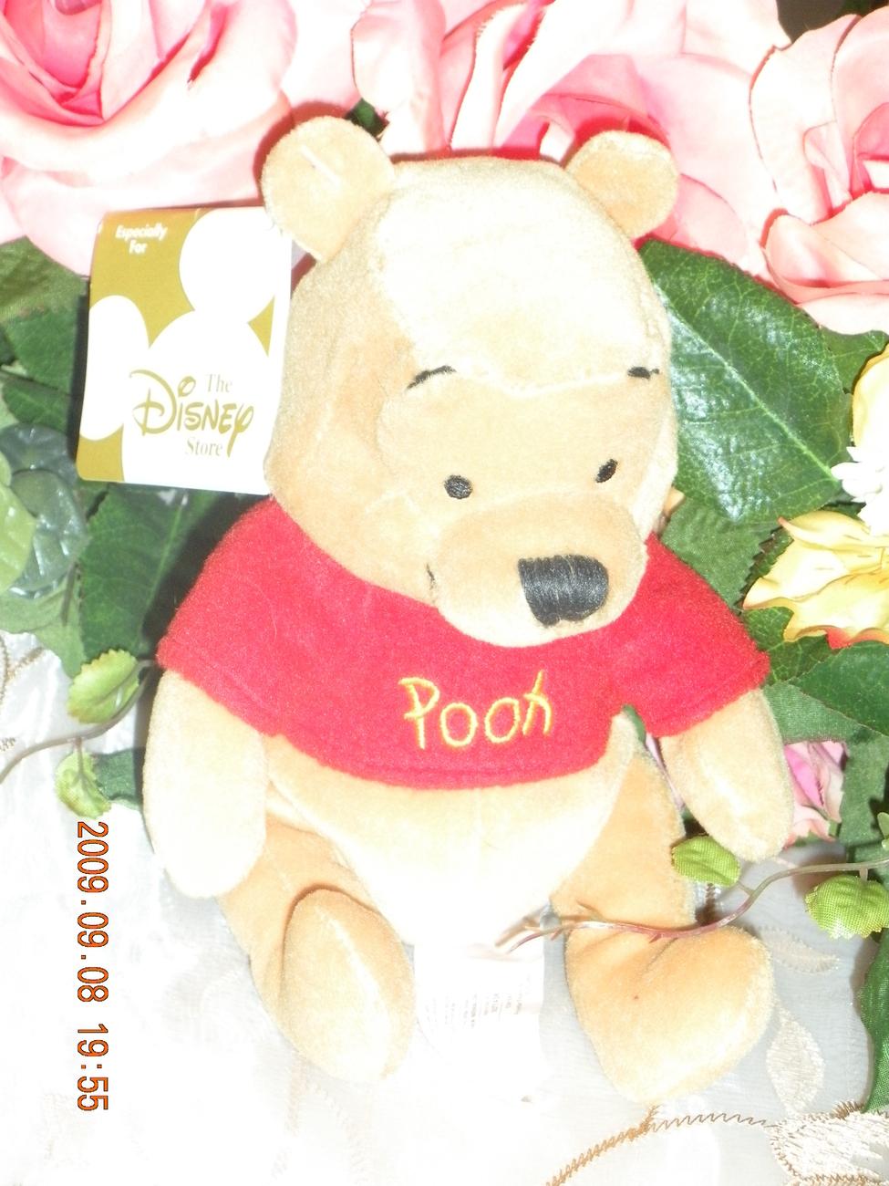 shop disney pooh bear - photo #43