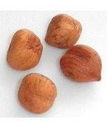 Hazel Nuts – Filberts (One Pound Bag) - $11.11
