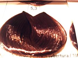 L'Oreal Professionnel Majirel IONENE G 5.3 Light Chestnut Dora*1.7oz. x3* - $38.15