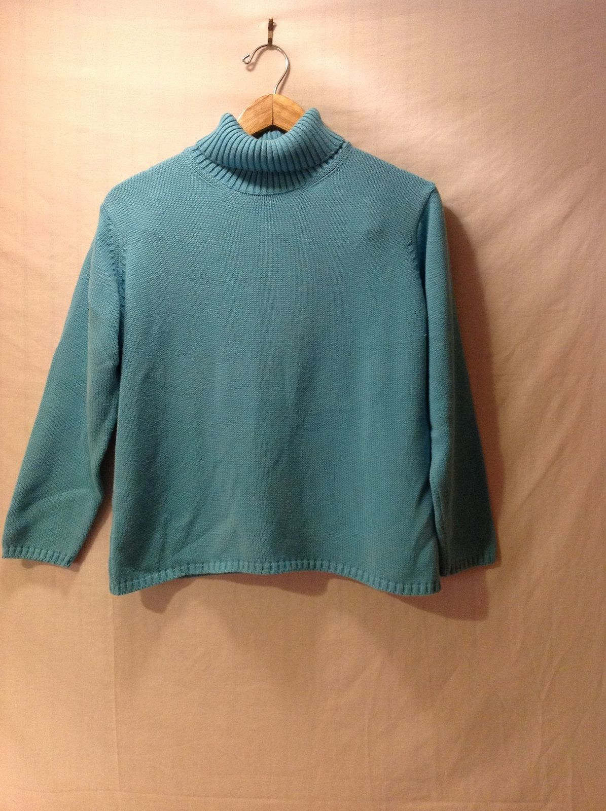 Gollenhaug Collection Womans Light Blue Turtleneck Sweater