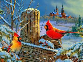 Winter Cardinals Cross Stitch Pattern***L@@K*** - $4.95
