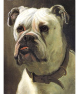 George Earl, Michael, the Archangel, 1870, Champion English Bulldog, Can... - $15.99