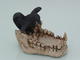 6 Inch Raven in Skull Hand Painted Resin and Cold Cast Ashtray, Multi - $18.76