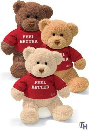 Gund Hugs Feel Better Bear Single [Toy]
