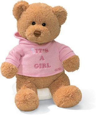 Baby Gift Idea G015419 Gund Its A Girl Teddy Bear by Baby Gift Idea