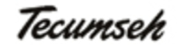 Tecumseh Brake Lever Bracket 786086 - $3.27