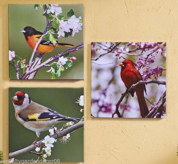 "Set of 3 -20""x 20"" Bird Stretched Canvas Prints-Cardinals & more Indoor/Outdoor"