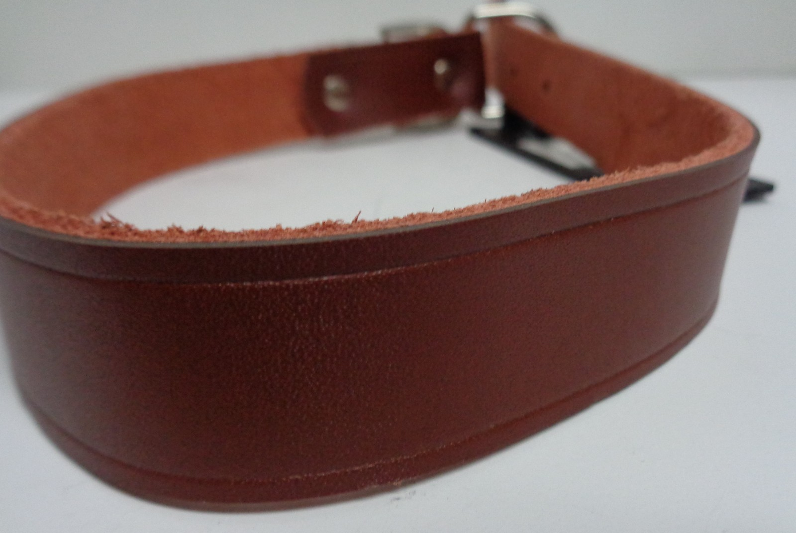 "Large Breed Leather Hunting Dog Collar NWT Adjustable 23"" PDQ"