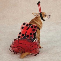 Casual Canine Lucky Lady Bug  Dog Halloween Costume XS-XL  Ladybug Pet - $17.95