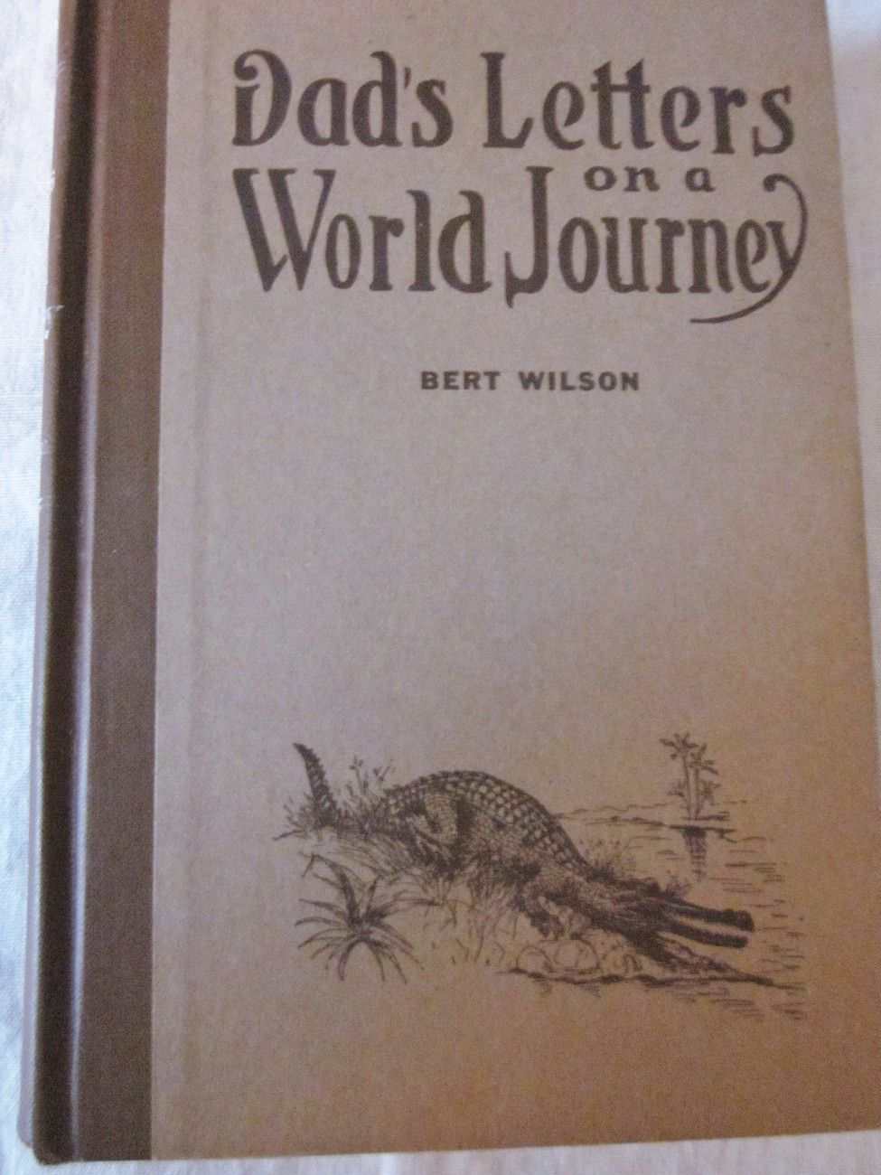 Dad's Letters On A World Journey by Bert Wilson 1921 Illus.