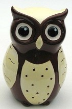 Ceramic Wide-Eyed Brown and White Owl Coin Bank - $18.25